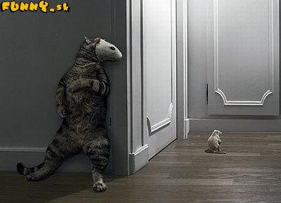 Nepríjemný pohľad do spätného zrkadla