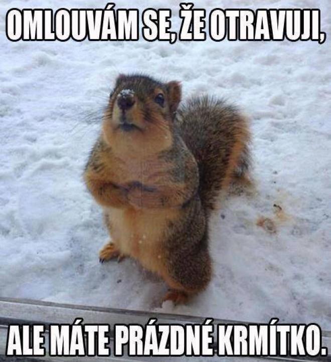 Zlatý :)