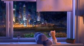 Smelé mačiatko je podľa očakávaní kombo viacerých animákov...